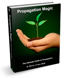 Propagation Magic