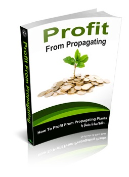 Profit From Propagating