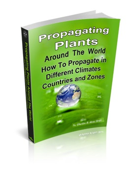 Propagating Plants Around The World